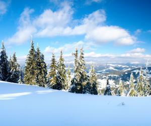 Чим прекрасний зимовий відпочинок в Карпатах